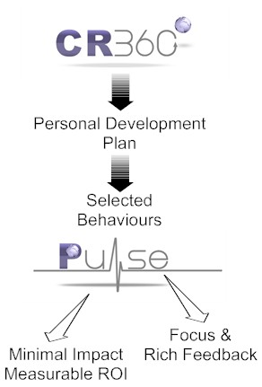 Pulse is a quick and effective way to measure the ongoing impact of coaching and behavioural change interventions.